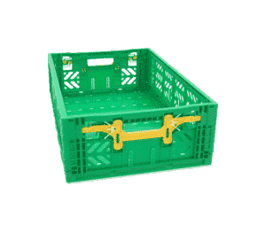 Foldable Crates for Fruit and Vegetables