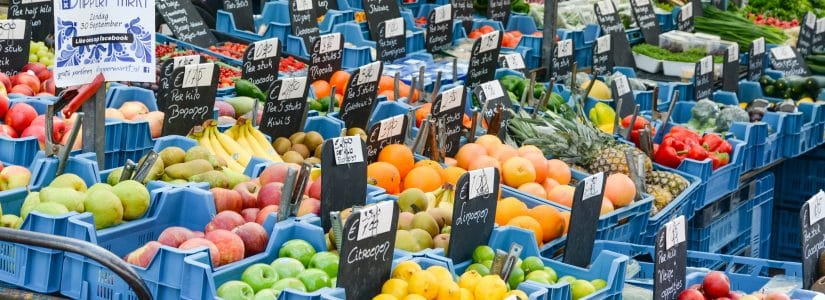 plastic crates for fruit and vegetables